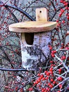 Abris pour oiseaux et insectes for Nichoir a rouge gorge