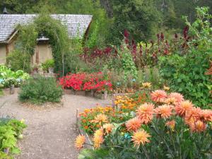 Cabane des jardiniers et dahlias