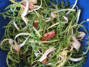 Salade de pissentit aux lardons