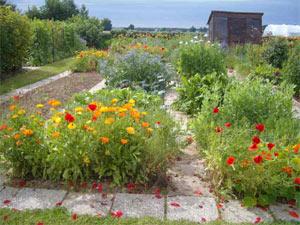 Concours National des Jardins Potagers 2010