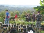 Foire aux plantes originales de Gaujacq - Automne 2010