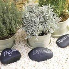 Galets marqués pour identifier les plantes