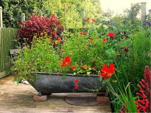 Baignoire en  zinc remplie de fleurs