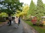 Visite à St Jean de Beauregard – Automne 2010
