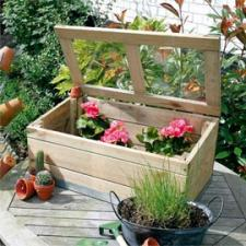 abri semis plantes tout. Black Bedroom Furniture Sets. Home Design Ideas