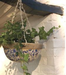 Suspensions : donnez de la hauteur à vos plantes