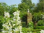 Idées pour un jardin blanc