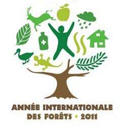 Année internationale de la forêt