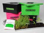Un mini composteur d'intérieur : la Moulibox