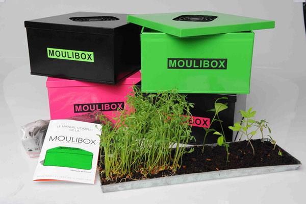 un mini composteur d 39 int rieur la moulibox. Black Bedroom Furniture Sets. Home Design Ideas