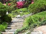 Utilisation de la pierre au jardin