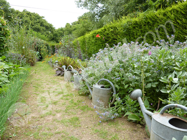 Décoration jardin zinc