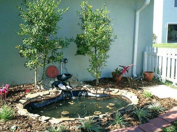 Installer un bassin dans son jardin for Bac plastique poisson jardin