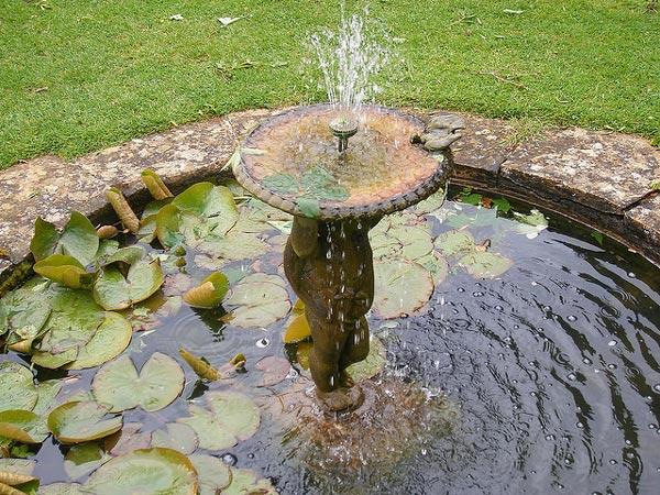 Quelle fontaine pour votre jardin