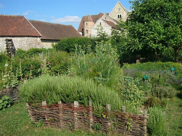 Jardin m di val carr des simples hortus et plantes for Au jardin conseils en jardinage