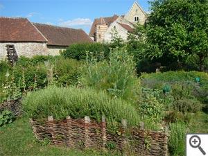Jardin médiéval : carré des simples, hortus et plantes magiques !
