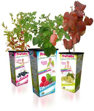 Fruitalité : packaging