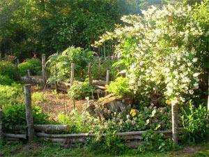 Talus en terrasses de rondins de bois