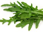Roquette : semis, culture et récolte
