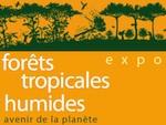 Exposition : Forêts tropicales humides, avenir de la planète