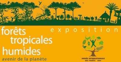 Exposition Forêts tropicales humides