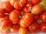 Récolte abondante au jardin ? Vendez sur Internet !