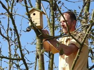Installation d'un nichoir pour oiseaux
