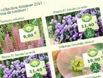 Jardin Express : catalogue automne 2011