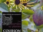 Courson : Journées des Plantes d'Automne 2011