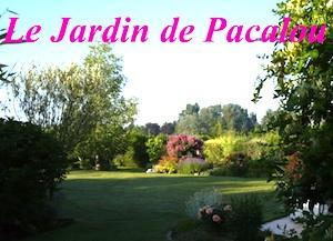 D.R. Le Jardin de Pacalou - http://lejardindepacalou.blogspot.com/
