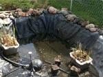 Vidanger un bassin de jardin