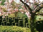 Les Jardins de Séricourt élus Jardin de l'Année 2012