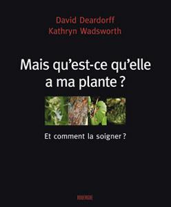 Mais qu'est-ce qu'elle a ma plante ? (et comment la soigner ?)