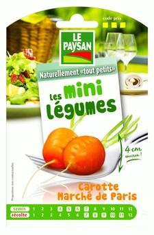 Mini légumes à semer