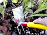 Petits outils à main pour le jardin
