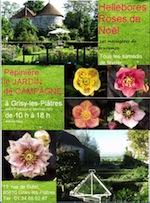 Fête des Hellébores au Jardin de Campagne - Grisy les Plâtres - Février 2012