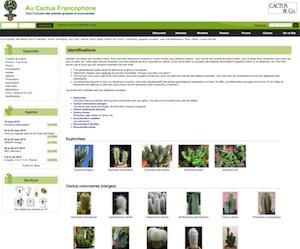 - http://www.cactuspro.com/