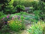 Idées bio et écologiques à faire pousser au jardin