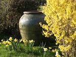 Jardin d'Elégance : des jarres majestueuses pour orner le jardin