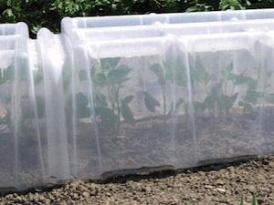 Pouss'Vert, des équipements futés pour le potager