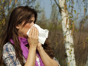Les allergies au pollen