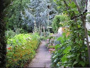 Allée dallée à travers le jardin