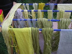 Les plantes tinctoriales - Teinture textile bio ...