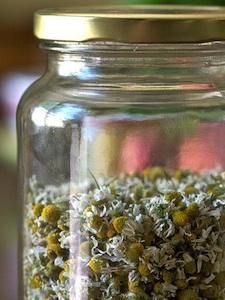 Camomille - Fleurs séchées