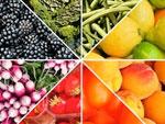 Fruit, légume : quelles différences ?