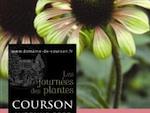 Grande fête des plantes ce week-end au Domaine de Courson
