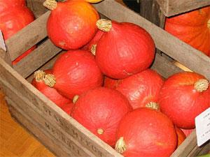 Récolte de potimarrons conservée dans une caisse