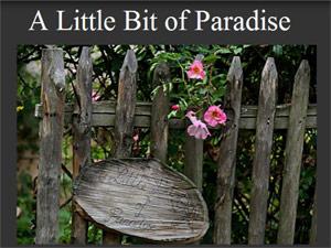 A Little Bit of Paradise - http://alittlebitofparadise.eklablog.com/