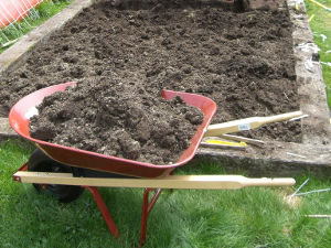 Brouette remplie de terre durant le bêchage