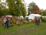 Les journées des plantes de Courson, automne 2012